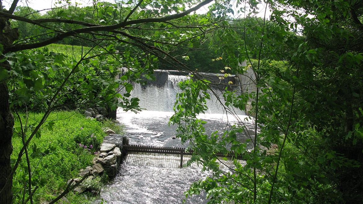 Spring Dam (2)