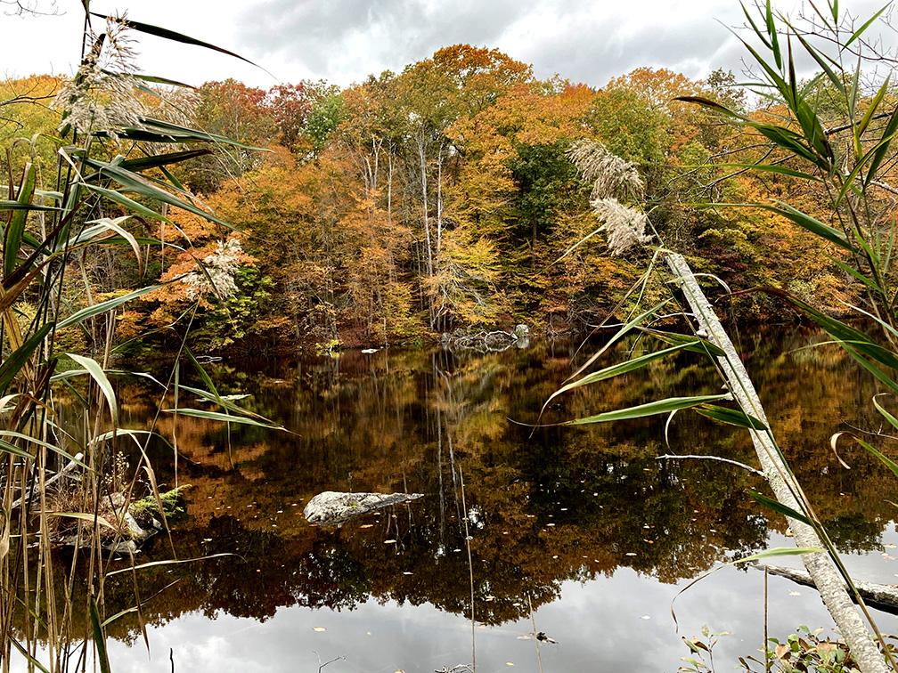 lake+shallowjpg